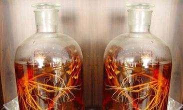 三七山楂酒的配方及制作方法
