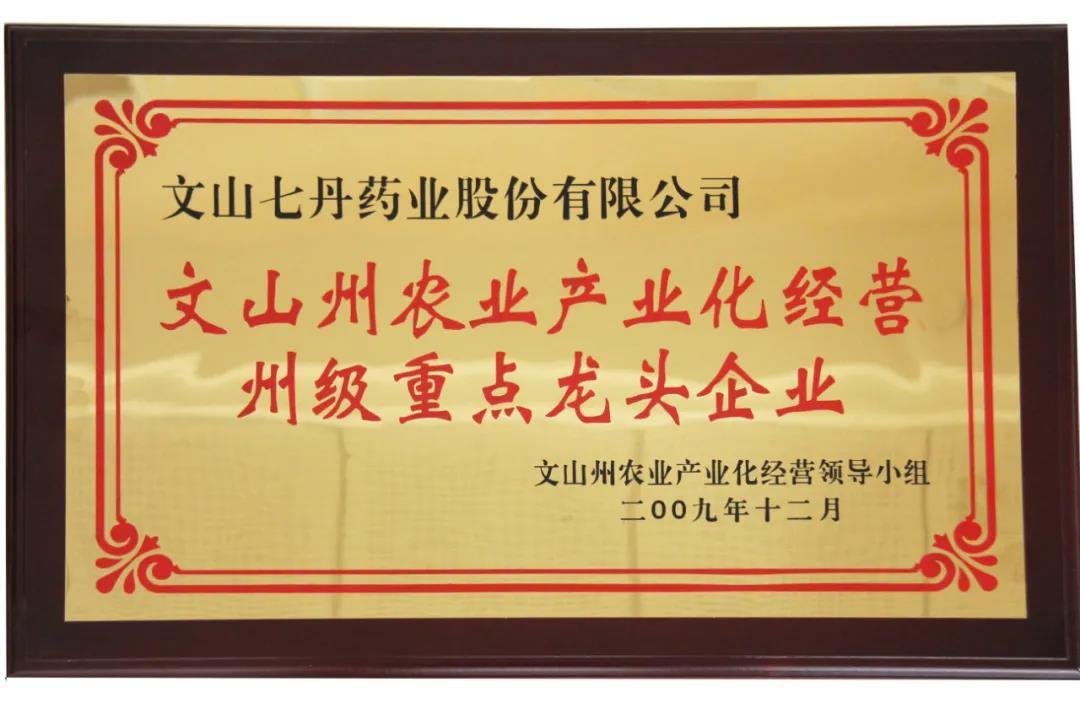 """七丹牌三七再次荣获2020年云南省""""10大名药材""""第一名"""
