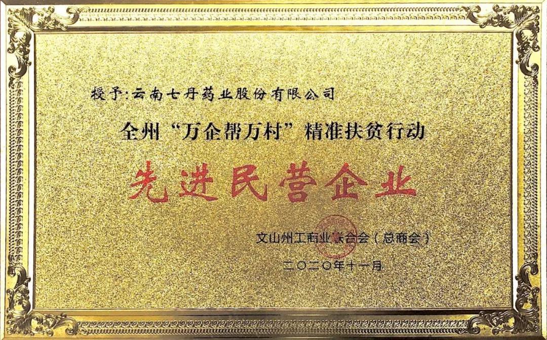 """七丹药业被授予文山州""""万企帮万村""""精准扶贫行动先进民营企业"""