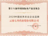 """七丹药业荣获""""2020中"""