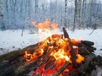 冬天吃三七的好处及吃法