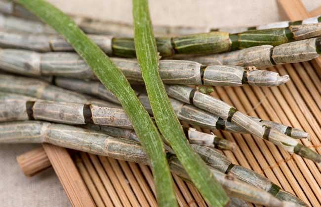 铁皮石斛可以长期吃吗?会不会有副作用?