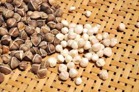 长期吃辣木籽有副作用吗