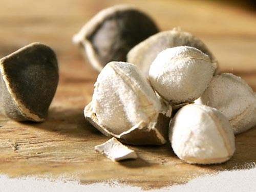 早上吃辣木籽和晚上吃辣木籽的区别在哪里?