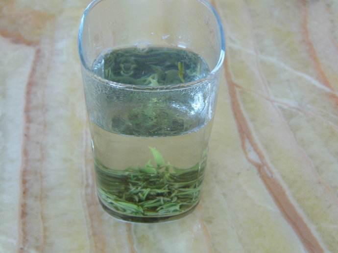 三七花能和绿茶一起泡吗?好不好?