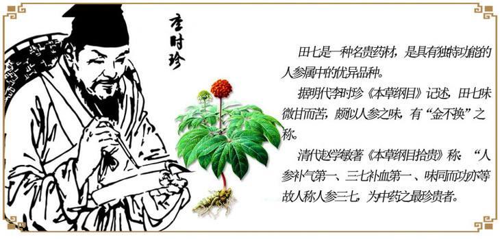 金不换神草:文山三七