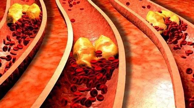 三七对止血活血补血的双向调理作用