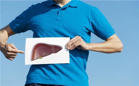 三七粉对肝脏有什么副作用