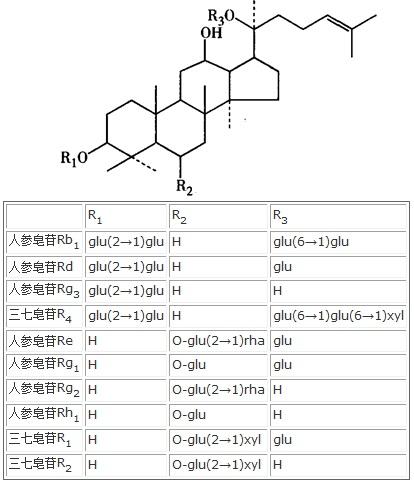 三七总皂苷的作用